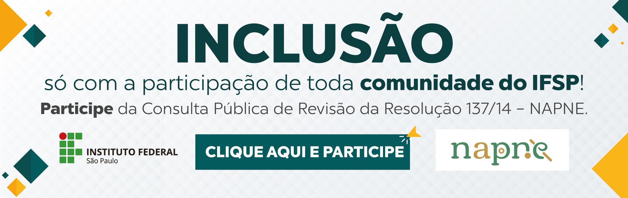 Napne_revisão